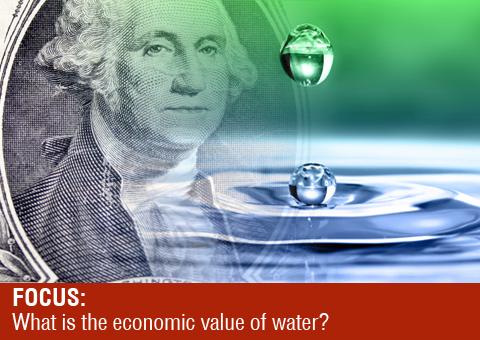 Liquid Assets header image